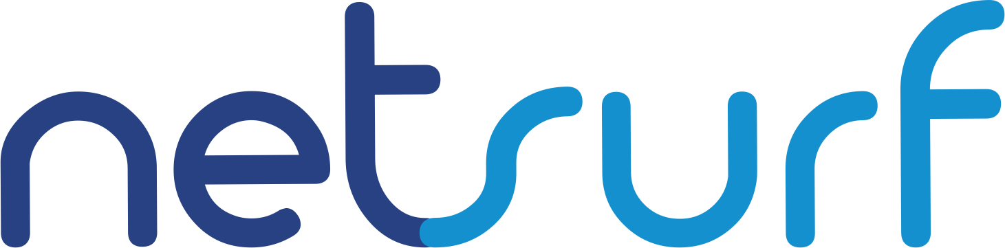 net surf logo