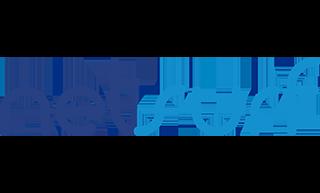 net-surf-logo